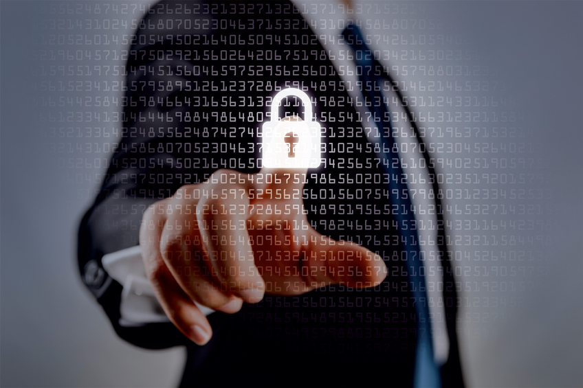 Safeguarding Your Online Business Privacy